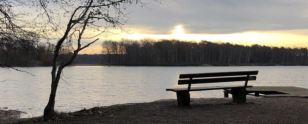 Eine leere Bank am Ufer eines Sees zu Beginn eines Wintertages. Die Kraft fehlt.