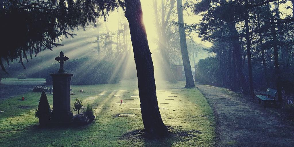 Die Strahlen der Sonne scheinen über eine Wiese mit einem Grabstein - ein Sinnbild für die Fragen zu meinem eigenen Ende.