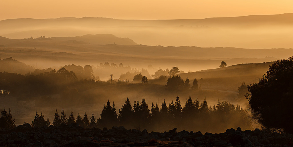 Ein neuer Morgen bricht über einem bewaldeten Tal mit Nebel heran.