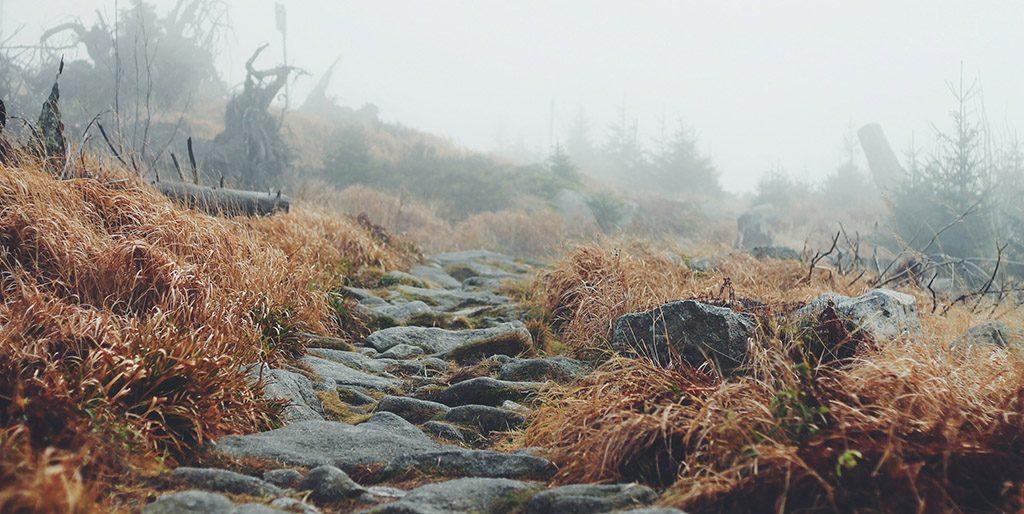 Ein Weg mit unebenen Steinen steigt im Nebel an - als symbolisches Bild für Anstöße, die das Leben mir immer wieder gibt.