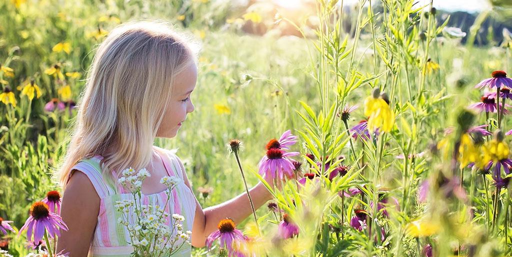 Ein kleines blondes Mädchen steht in einer Blumenwiese und hat einen Strauß selbst gepflückter Blumen in der Hand. Sie berührt eine Blüte und das sieht nach Glück aus.